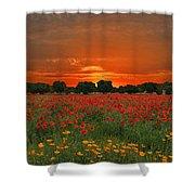 Blaze Of Glory Shower Curtain by Lynn Bauer