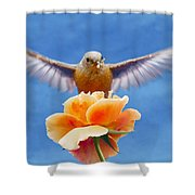 Bless  You Shower Curtain by Jean Noren