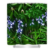 Blue Bells Shower Curtain by Aimee L Maher Photography and Art