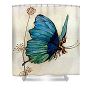 Blue Butterfly II Shower Curtain by Warwick Goble