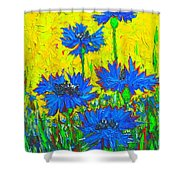 Blue Flowers - Wild Cornflowers In Sunlight Shower Curtain by Ana Maria Edulescu