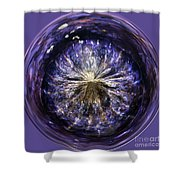 Blue Jelly Fish Orb Shower Curtain by Terri  Waters