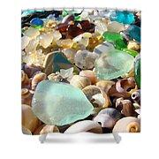Blue Seaglass Beach Art Prints Shells Agates Shower Curtain by Baslee Troutman