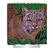 Bobcat Sedona Wilderness Shower Curtain by Bob and Nadine Johnston