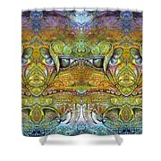 Bogomil Variation 12 Shower Curtain by Otto Rapp