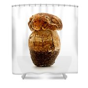 Boletus Edulis Shower Curtain by Fabrizio Troiani