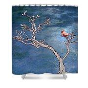 Bonsai Cardinal Shower Curtain by John Haldane