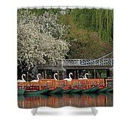 Boston Swan Boats  Shower Curtain by Juergen Roth