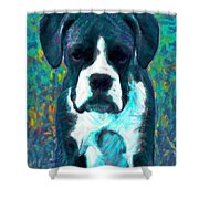 Boxer 20130126v4 Shower Curtain by Wingsdomain Art and Photography