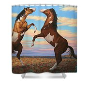 Boxing Horses Shower Curtain by James W Johnson