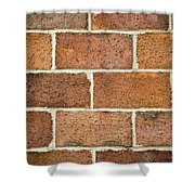 Brick Wall Shower Curtain by Frank Tschakert