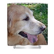 Buffie Shower Curtain by Lisa  Phillips