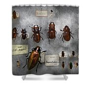 Bug Collector - The Insect Collection  Shower Curtain by Mike Savad