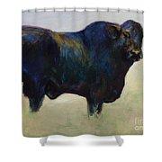 Bull Shower Curtain by Frances Marino