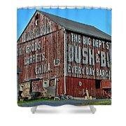 Bush And Bull Roadside Barn Shower Curtain by Paul Ward