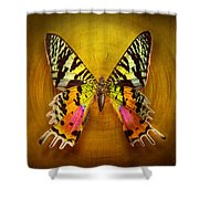 Butterfly - Butterfly Of Happiness  Shower Curtain by Mike Savad
