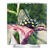 Butterfly In Flower Shower Curtain by Susan Leggett