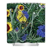 Butterfly Wildflowers Spring Time Garden Floral Oil Painting Green Yellow Shower Curtain by Walt Curlee