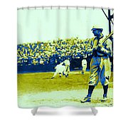 Cactus League - 20130207 Shower Curtain by Wingsdomain Art and Photography