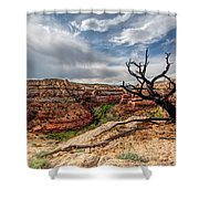 Calf Creek Shower Curtain by Dustin  LeFevre