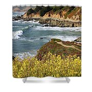 California Coast Overlook Shower Curtain by Carol Groenen