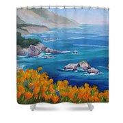 California Poppies Big Sur Shower Curtain by Karin  Leonard