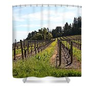 California Vineyards In Late Winter Just Before The Bloom 5D22167 Shower Curtain by Wingsdomain Art and Photography