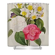 Camellias Narcissus And Pansies Shower Curtain by Pierre Joseph Redoute