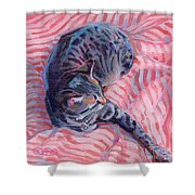 Candy Cane Shower Curtain by Kimberly Santini