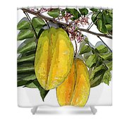 Carambolas Starfruit Two Up Shower Curtain by Olivia Novak