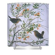 Carolina Wren And Jasmine Shower Curtain by Ben Kiger