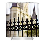 Cathedral Basilica Shower Curtain by Scott Pellegrin