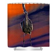 Celebrating The Dawn Shower Curtain by David Lee Thompson