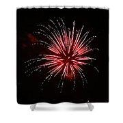 Celebration Xxvii Shower Curtain by Pablo Rosales