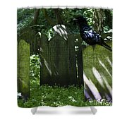 Cemetery With Ancient Gravestones And Black Crow  Shower Curtain by Georgia Fowler