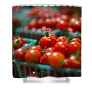 Cherry Tomatoes Shower Curtain by Caitlyn  Grasso