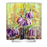 Chess Flowers Shower Curtain by Zaira Dzhaubaeva