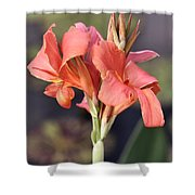 Chicago Botanical Gardens - 79 Shower Curtain by Ely Arsha