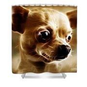 Chihuahua Dog - Electric Shower Curtain by Wingsdomain Art and Photography