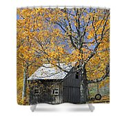 Childhood Memories Tire Swing  Shower Curtain by Timothy Flanigan
