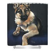 Chilli Shower Curtain by Cynthia House