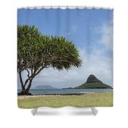 Chinamans Hat With Tree - Oahu Hawaii Shower Curtain by Brian Harig