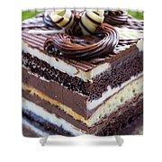 Chocolate Temptation Shower Curtain by Edward Fielding