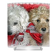 Christmas Puppy Shower Curtain by Bob Hislop