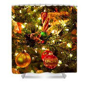 Christmas tree background Shower Curtain by Elena Elisseeva