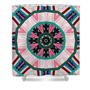 Circular Patchwork Art Shower Curtain by Barbara Griffin
