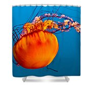 Close Up Of A Sea Nettle Jellyfis Shower Curtain by Eti Reid