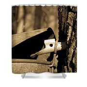 Closeup Of A Maple Tap Shower Curtain by Edward Fielding