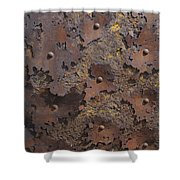 Color of Steel 2 Shower Curtain by Fran Riley