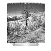 Colorado Backcountry Autumn View BW Shower Curtain by James BO  Insogna